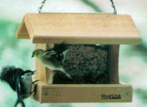 Professional Bird Feeder #5