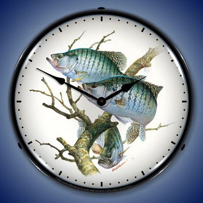 Crappies By Mark Susinno Lighted Wall Clock