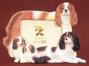 King Charles Cavalier 3-1/2 X 5 Three Dimensional Photo Frame