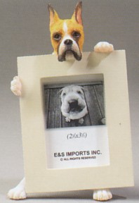 Boxer With Cropped Ears 2-1/2 X 3-1/2 Three Dimensional Photo Frame
