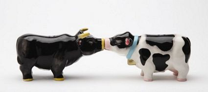 Cow And Bull Kissing Magnetic Salt And Pepper Shakers