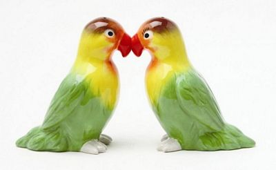 Lovebirds Kissing Magnetic Salt And Pepper Shakers