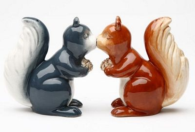 Squirrels Magnetic Salt And Pepper Shakers
