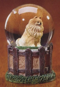 Pomeranian Adult Kennel Club Waterglobe