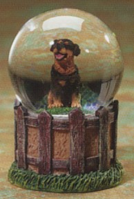 Rottweiler Adult Kennel Club Waterglobe